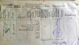 Справа про відзначення Олени Степанів хрестом Карла, 1914 р. (ЦДІА України у Львові)